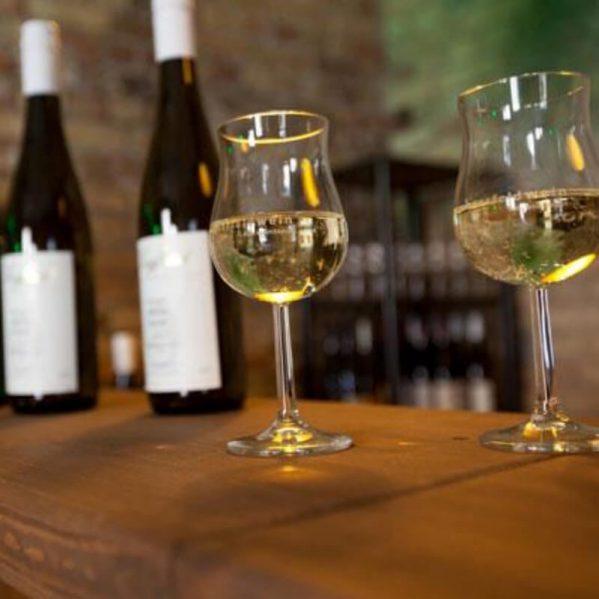 querfeldwein Specials: Weinprobe